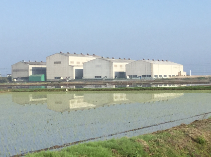 陽春田植え時期の関東工場